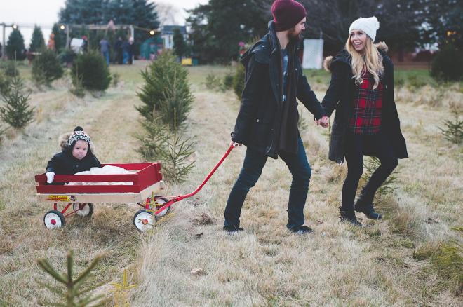 Christmas Tree Farm Session-34